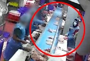 פענוח הרצח במפעל עופות בלוד: החשוד השליך סכין שננעצה בחזהו של הקורבן והביאה למותו